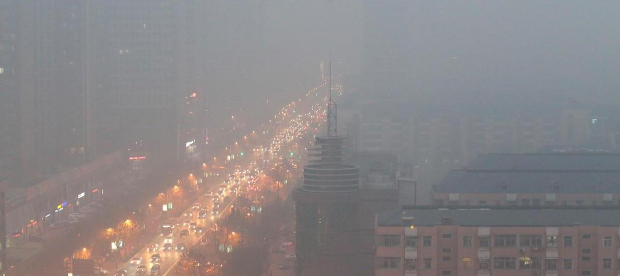 Air Pollution Effects and Immune System Response