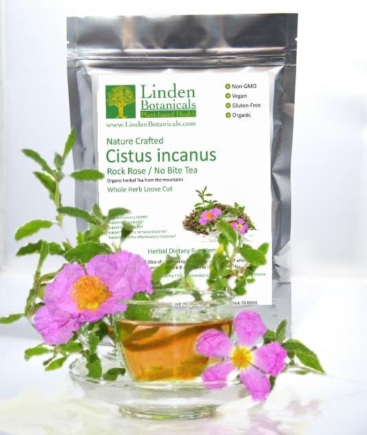 Cistus incanus tea / Cistus tea / Rock Rose tea (www.LindenBotanicals.com)