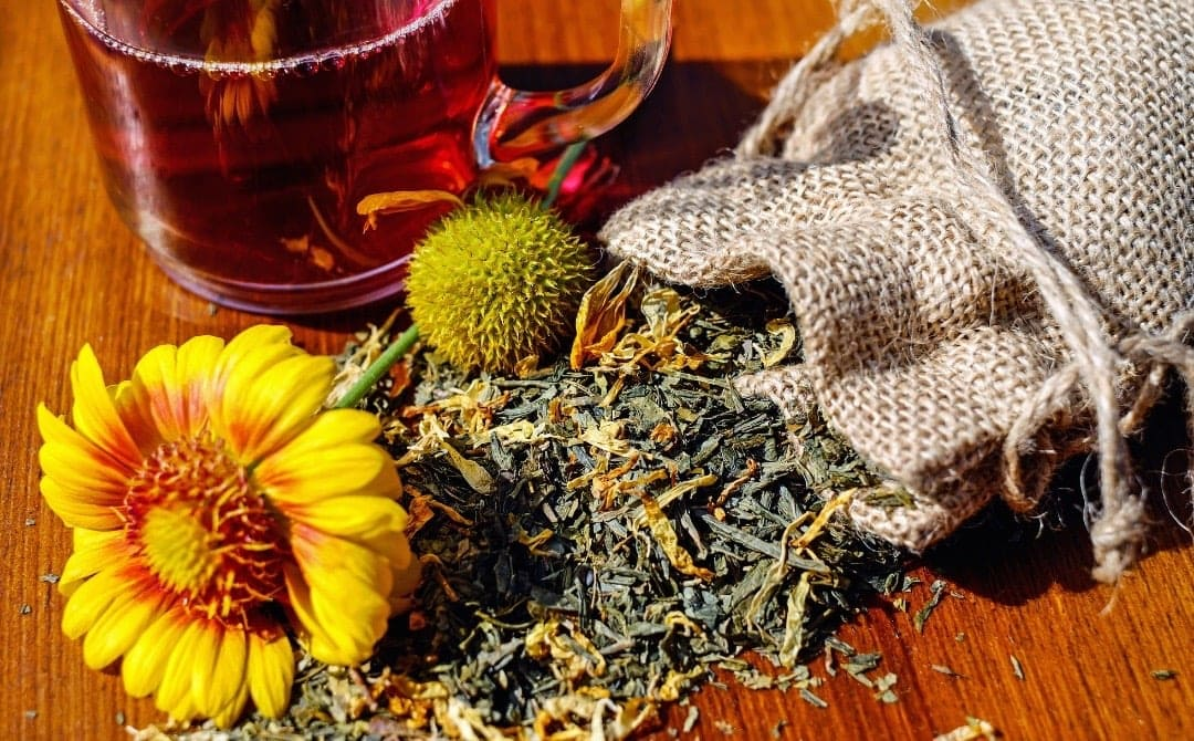 Herbal Tea Benefits: Improve Memory and Soothe Your Gut