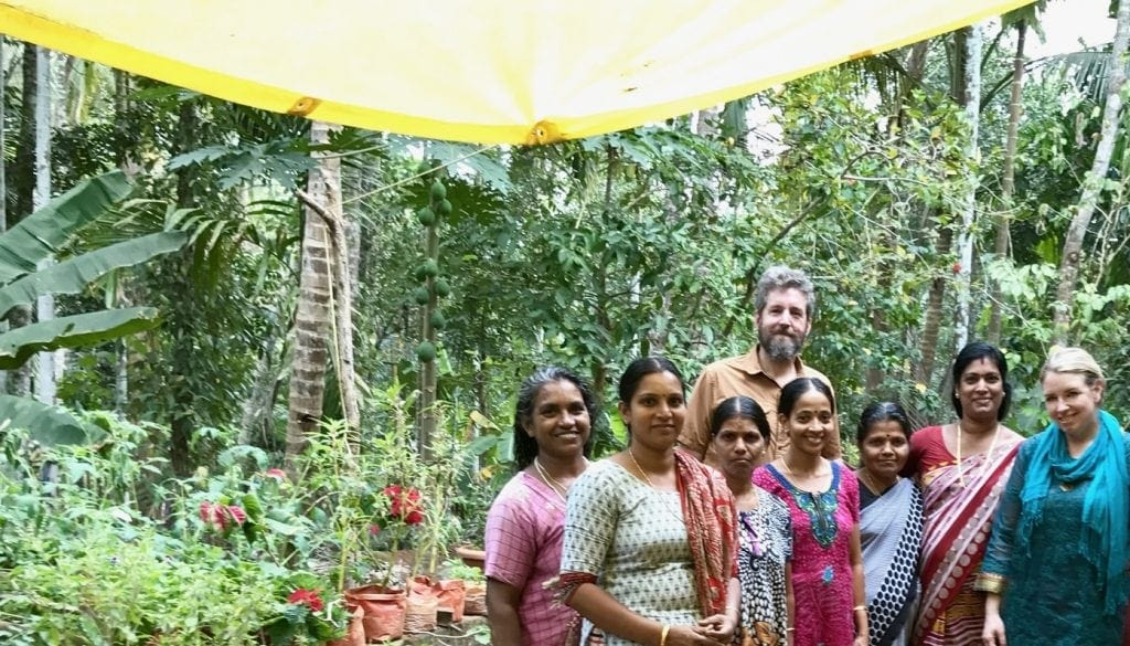 Linden Botanicals - Why Our Online Tea Store  Is Different (Women's Cooperative, Kozhikode, India)